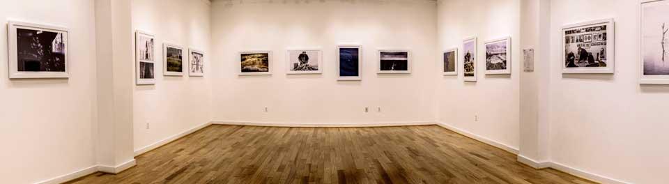 vivid-gallery